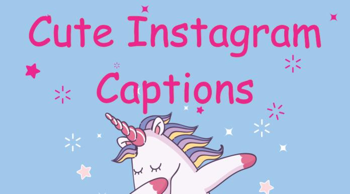 Cute Instagram Captions