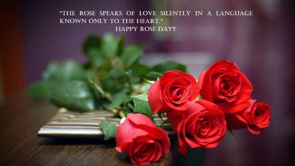 best quotes for rose day