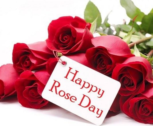 best rose day images