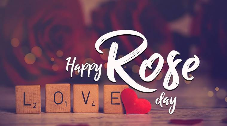 best rose day shayari