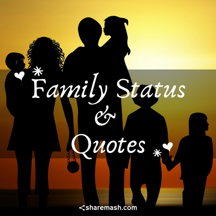 Family Status, Captions & Quotes